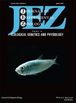 JEZ_cover